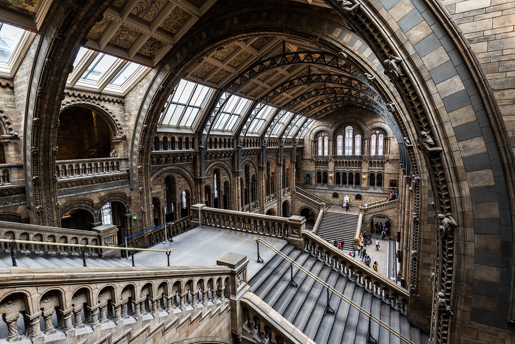 Image result for Natural History Museum, London