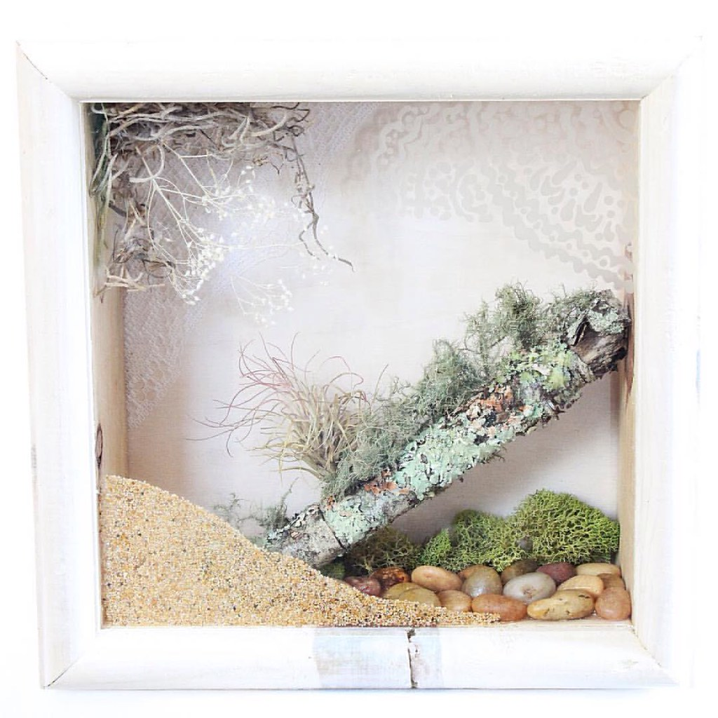 Nature Wall Art by Hieropice