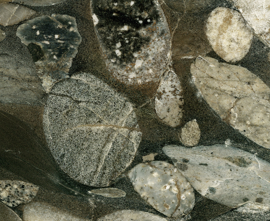 Metaconglomerate Quot Black Marinace Gold Granite Quot Precambr