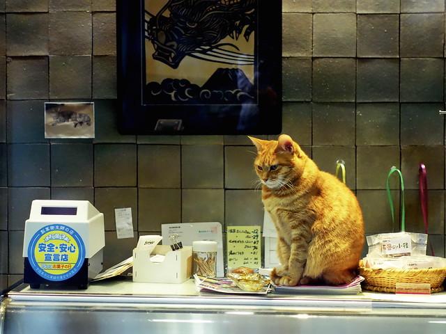 Cat clerk / 安全,安心菓子店