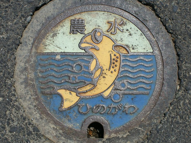 Fukui pref, manhole cover 2 (福井県日野川流域のマンホール2)
