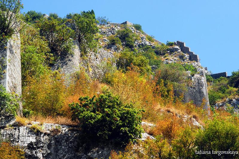 Вид на крепость Св. Ивана в Которе