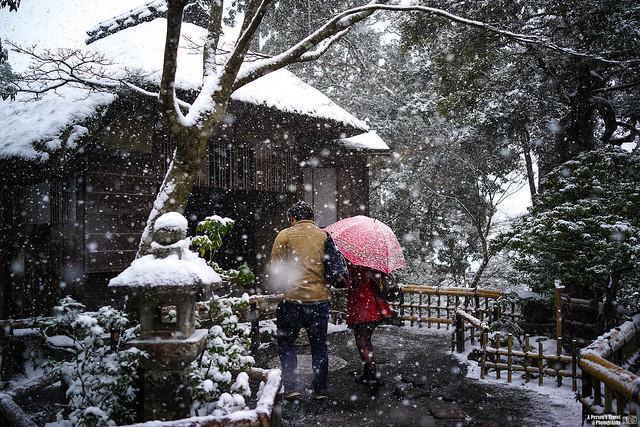 2014_Winter_Kyounomichi_EP5-4