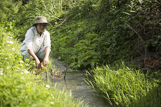 返鄉尋根的阿美族人舒米ž‧如妮,5年前開始了水稻田復耕計畫。劉人豪Fredrick Liu/攝影