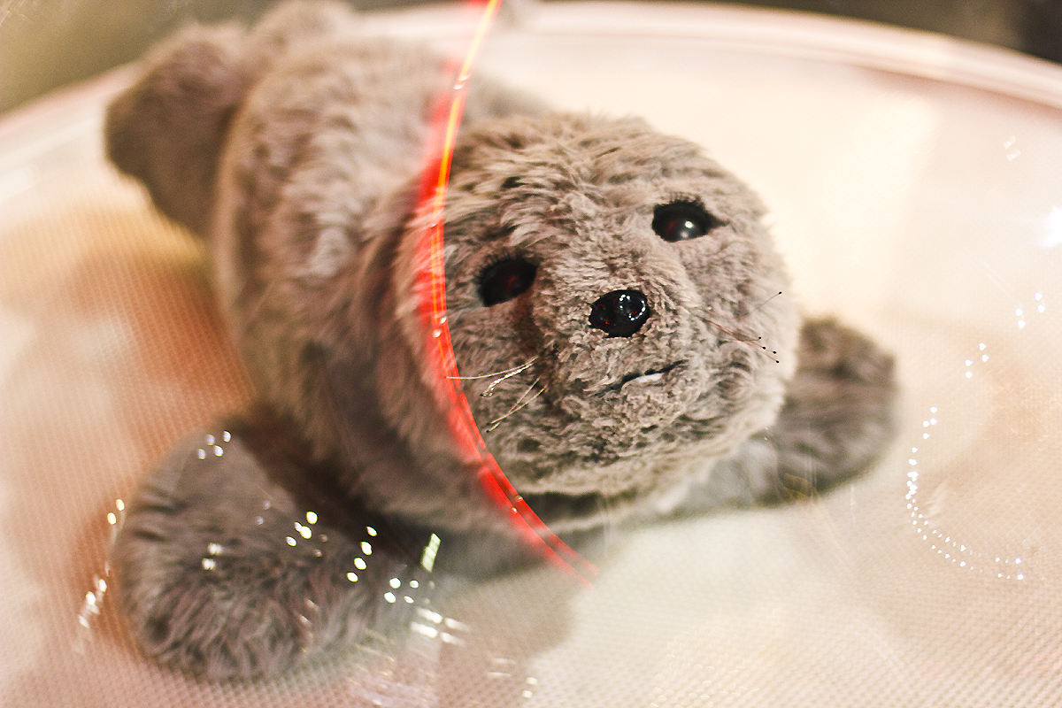 robot miraikin emerging technology japan museum science taro seal robot