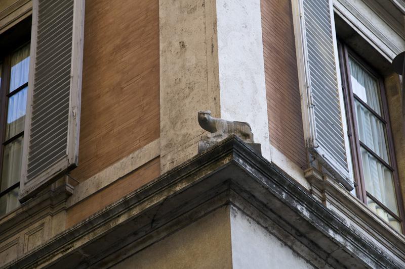 Rome - La gatta