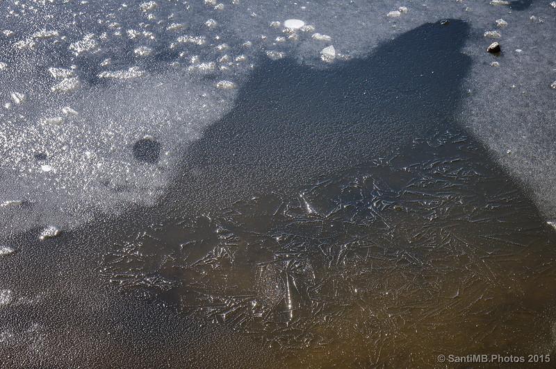 Agujas de hielo en el agua del pantano de Santa Fe