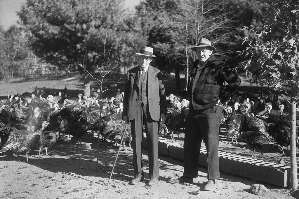 Former Governor Wilbur L. Cross with Dimocks Turkeys
