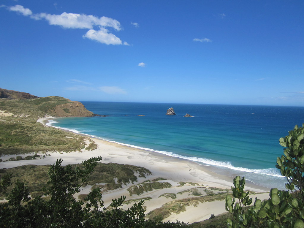 Dunedin Peninsular