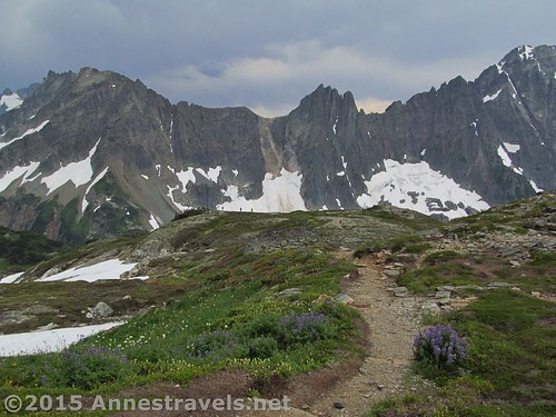 Hiking back down Sahale Arm, North Cascades National Park, Washington