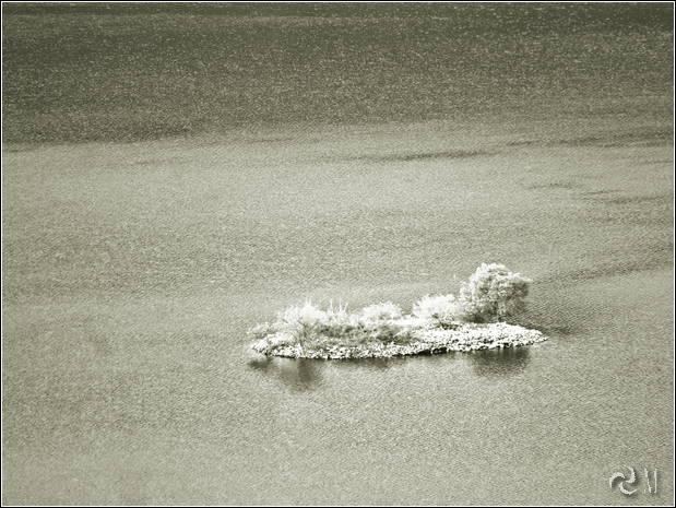 04 - isla de las moras ribadelago 014tn06