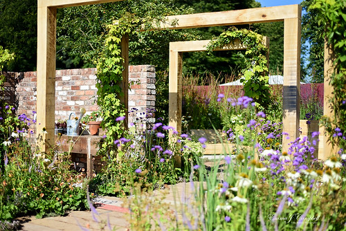 RHS Tatton Flower Show 2016 | by Reckless Gardener