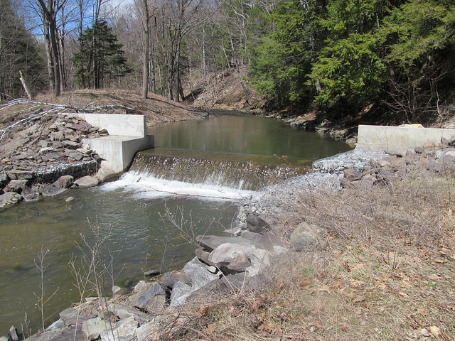Lower spillway of Myosotis Dam