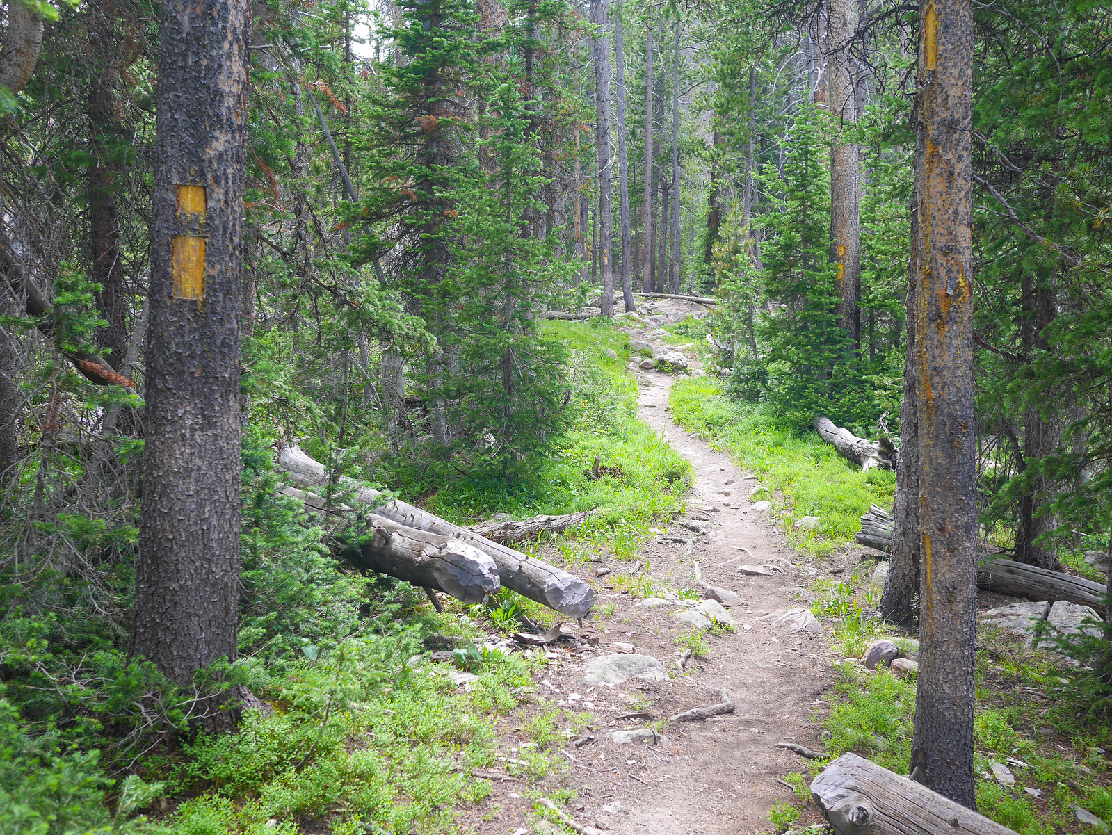 Trail to Middle Basin