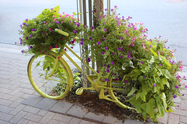 bicycle-planter-creemore-ontario