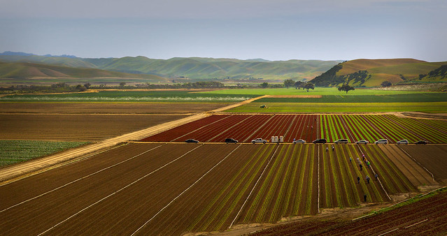 photo of California farm