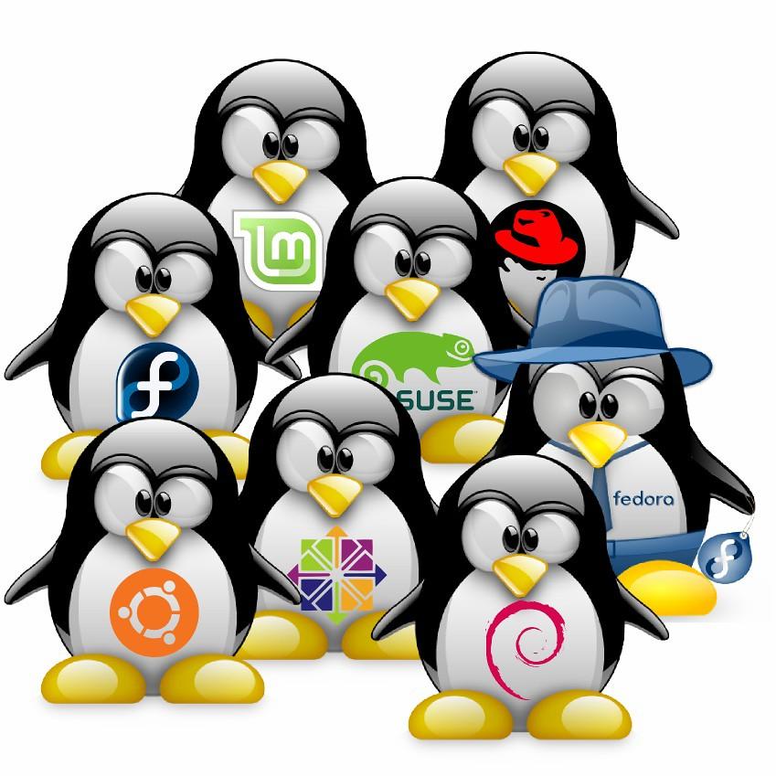 Sviluppo software in gruppi di lavoro complessi