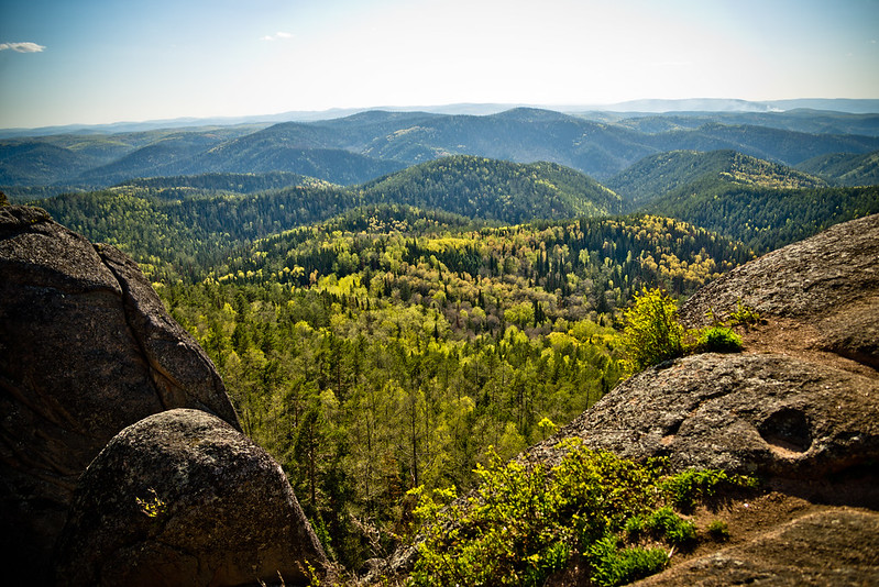 Stolby Nature Sanctuary (National Nature Reserve)
