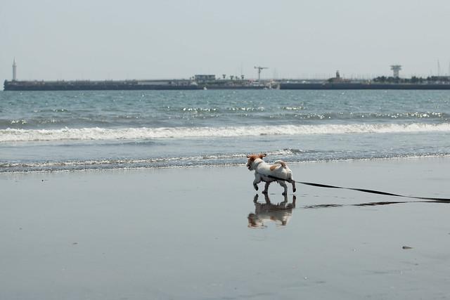 江の島(片瀬東浜)5