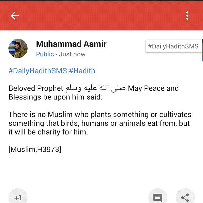 Dailyhadithsms Hadith Beloved Prophet May Peace And Flickr