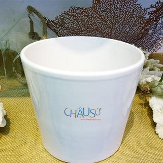 chausu24h.com | chau su | chau my nghe