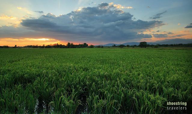 sunset scenery along the Tayug-San Nicolas road
