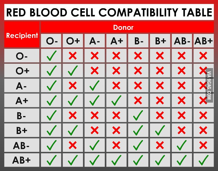 Blood Type Charts: Blood type compatibility chart | twintiger007 | Flickr,Chart