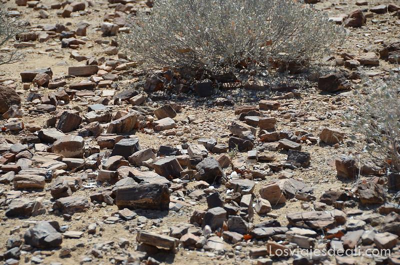 Patrimonio de la humanidad de namibia