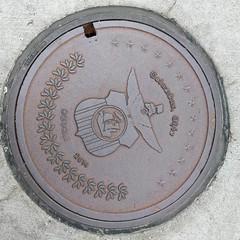 #Columbus 2014 #manholecover