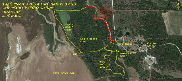 Eagle Roost Trail Track
