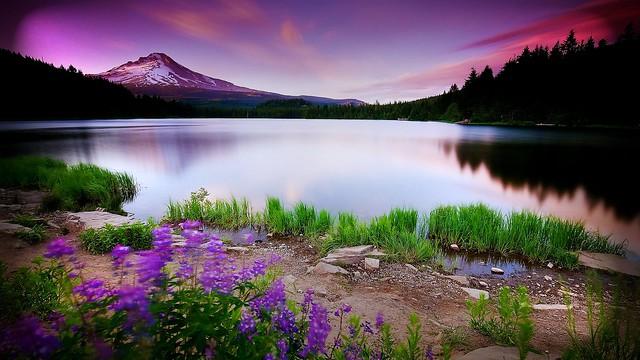landscape nature photography