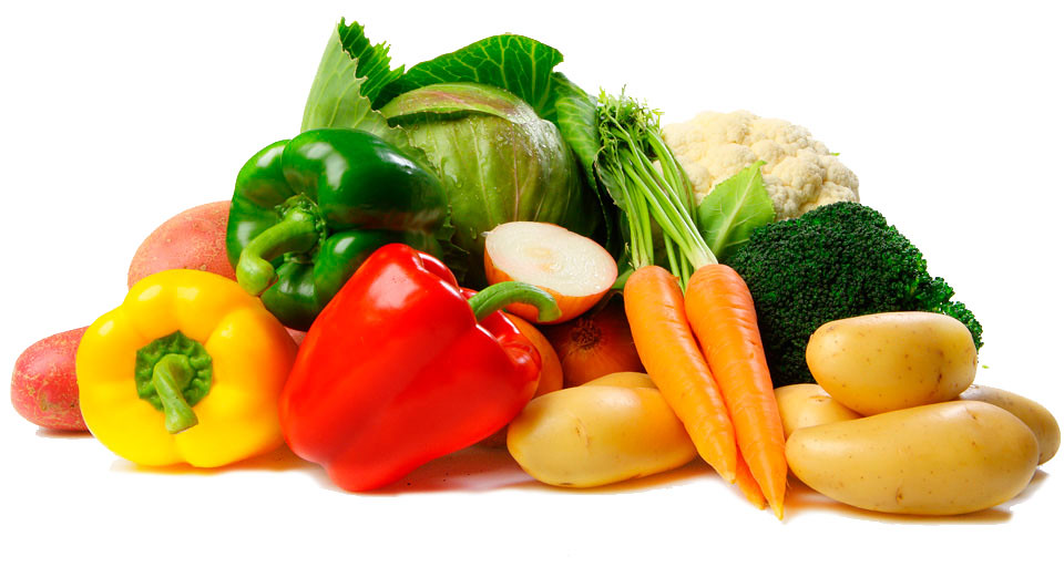 Sustainable Nutrition Manual