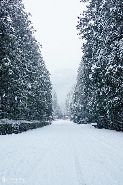 那些RX1走過的冬季 | 13 | 聽見,下雪聲音