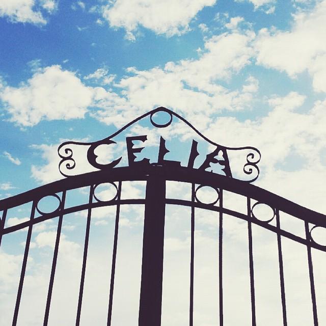 Celia. Doors to Heaven.
