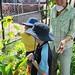 permaculture in gulf school gardens
