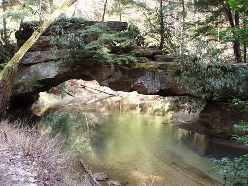 Rock Bridge | by US Forest Service - Southern Region