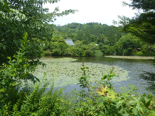 jp16-Kyoto-Ryoan-ji-unesco (3)