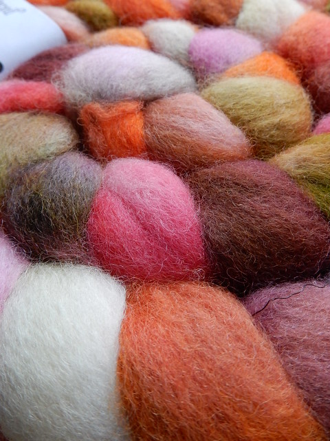 TDF fibre choice no 2 (2)