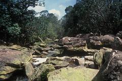 Parc national de Preah Monivong
