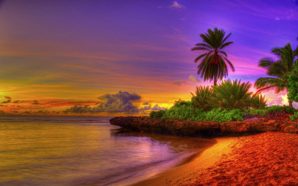 Tropical Beach Sunset With Hammock Wallpaper Cool Free