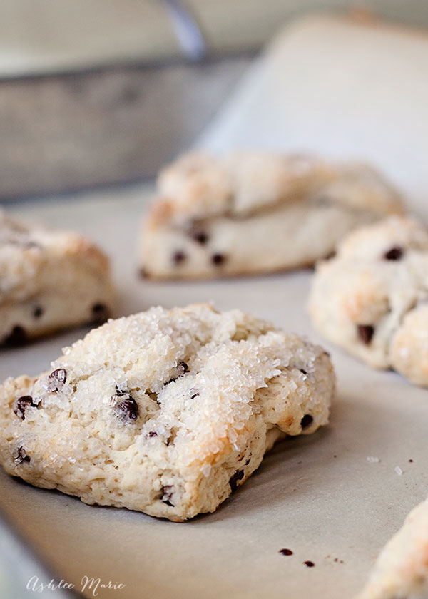 We love scones at our house and it doesnt get much better than when they are filled with chocolate chips