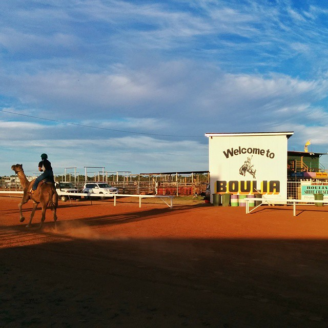Next time I'm in Boulia, QLD, I want to see a Rodeo.