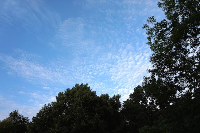 Blue Sky Frankfurt
