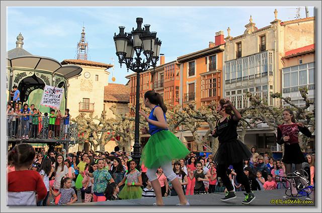 Feria de Asociaciones en Briviesca (20)