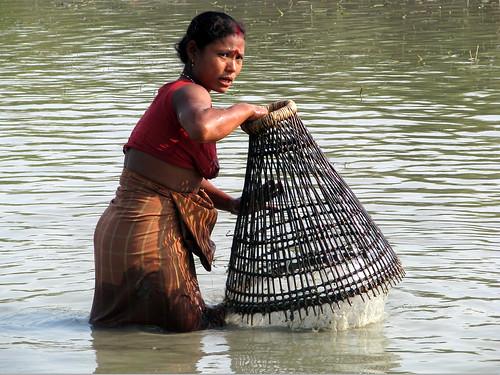 नदी में मछली पकड़ती महिला