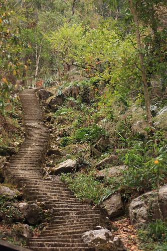 steps and steps and steps and steps