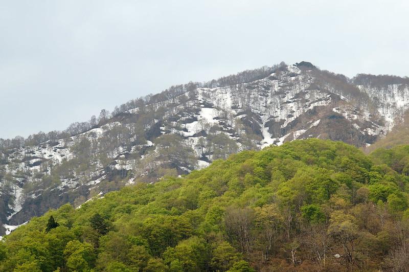 残雪と新緑 #2_201504_NO2