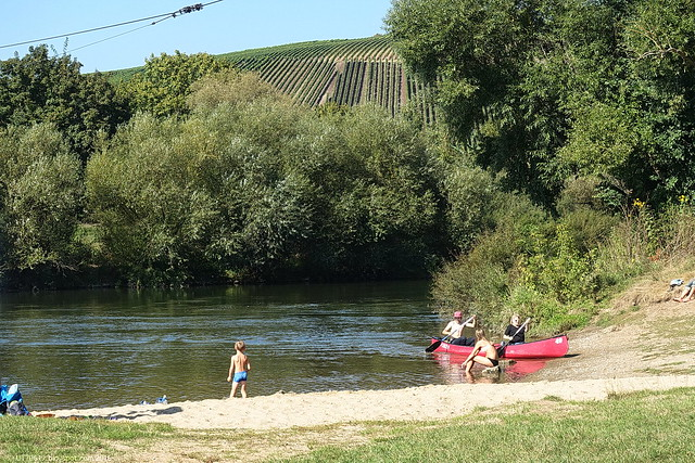 Mainufer Nordheim
