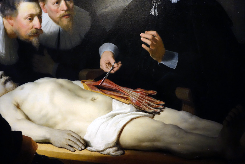 Rembrandt, The Anatomy Lesson of Dr. Tulp, detail with arm… | Flickr