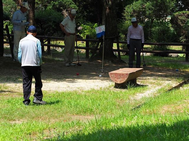 Hatonomori Park (鳩の森公園)